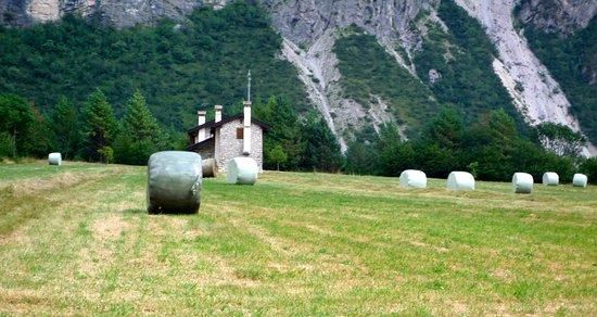 Cimolais, Italy: Balle di fieno pronte per la raccolta