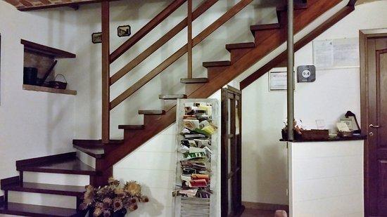 Agriturismo Ca Trinche: Reception e scalinata