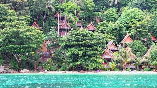 Koh Tao Tropicana Resort: cabanes plage_large.jpg