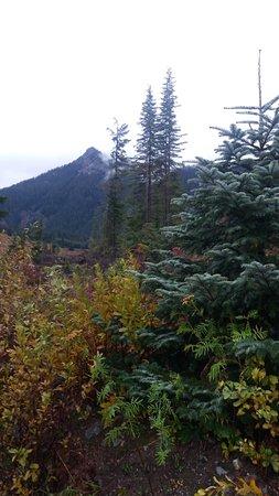 Foto Snoqualmie Pass