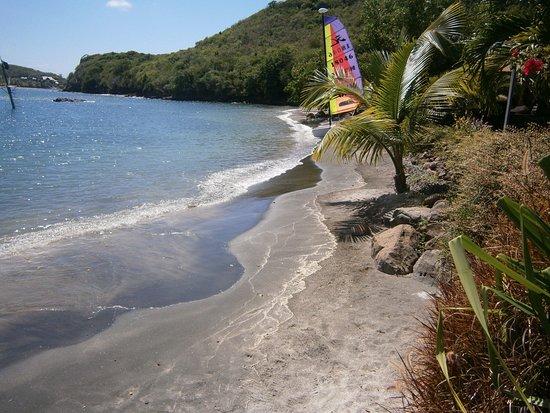 Petite Calivigny, Grenada: Stranden vid Le Phare Bleu.