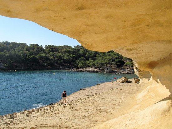 Playa Nudista El Mago : Portal Vells