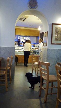 Bar Lillo Rome Trastevere Restaurant Reviews Phone