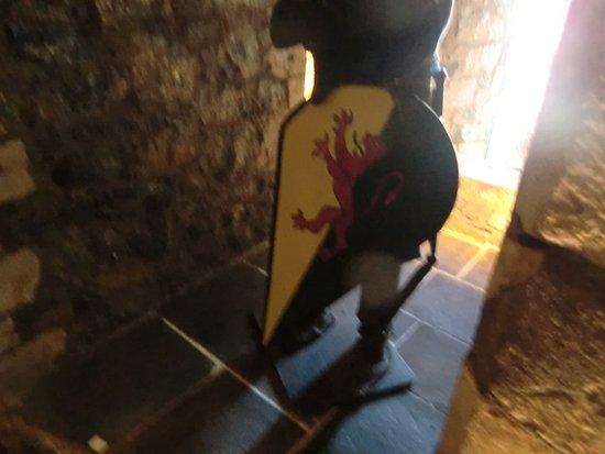 كيلكيني, أيرلندا: Lo stemma di Faenza nei sotterranei! Chi ha copiato?