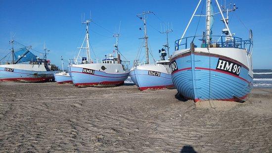 Fjerritslev, Denmark: Besøg på Thorup Strand i stiv kuling.