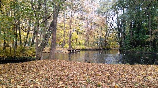 Pezinok, Eslovaquia: Zamocky park