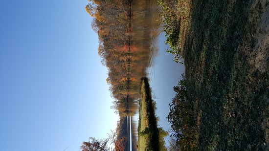 Bear, DE: Lums Pond State Park