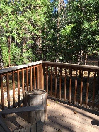Evergreen Lodge at Yosemite: photo1.jpg
