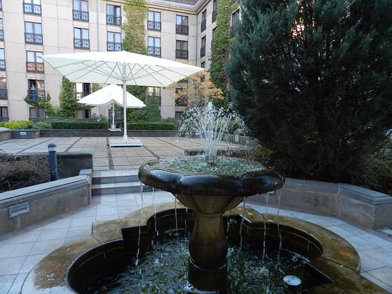 The Westin Grand Berlin: Garden in center of hotel