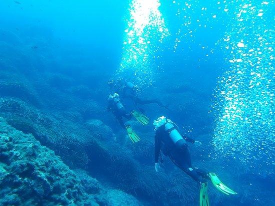 Bezz Diving Centre
