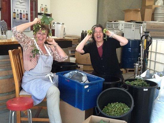 Tasman, Nova Zelândia: Mila & Mary 'goofing around'