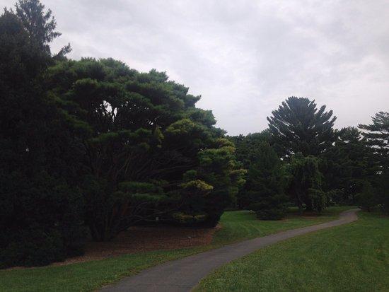 Arboretum In Fall Picture Of Morton Arboretum Lisle