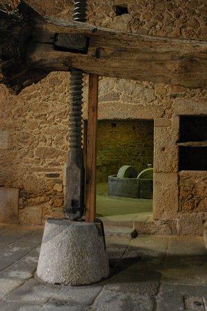 Idanha-a-Nova, Portugal: Espaço de museu