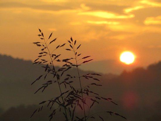 Brasstown, NC: Sunrise John Campbell