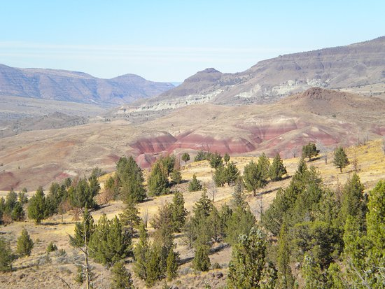 John Day Fossil Beds National Monument: another view of Painted Hills