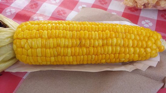 Kent, WA: Corn on the cob is a must when visiting the pumpkin patch and corn maze. Delicious!