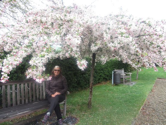Arrowtown, New Zealand: Um encanto de lugar.