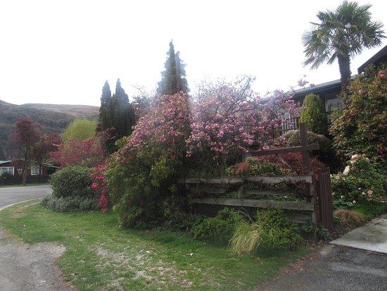 Arrowtown, New Zealand: Vale sair do centro da vila e passear pelas ruas mais afastadas.