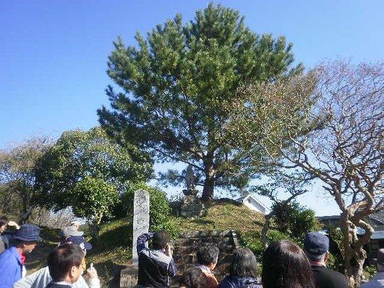 Shitaragahara History Museum : 設楽原歴史資料館周辺近くの遺跡等