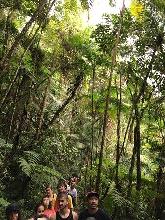 Pousada das Cachoeiras: photo9.jpg
