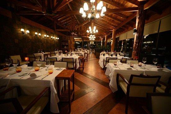 Foto de jungle restaurante puerto iguaz j alta cocina for Restaurante puerto rico madrid