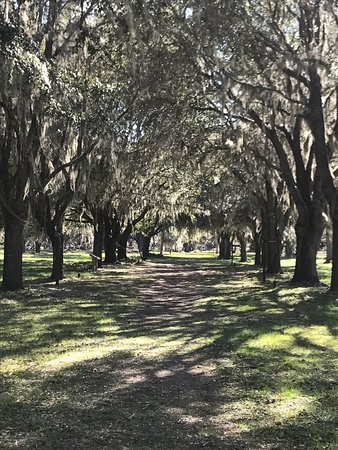 Fort Frederica National Monument: Such a beautiful spot!