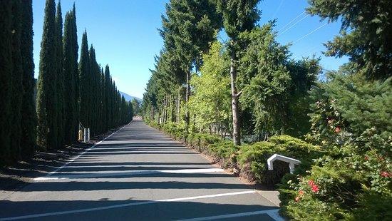 Phoenix, OR: Entrance Driveway