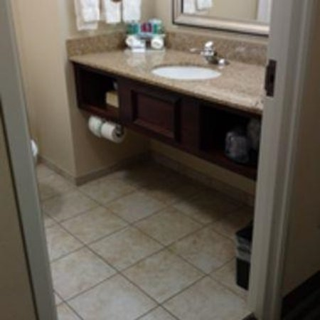 Holiday Inn Express Hotel & Suites Youngstown W - I-80 Niles Area Photo