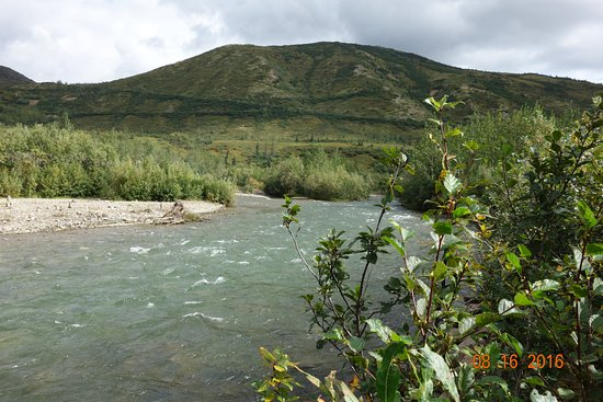 Denali Backcountry Lodge: View by the river.