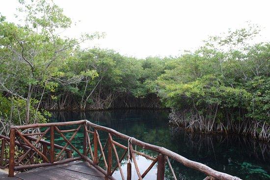 Bel Air Collection Xpu Ha Riviera Maya: Cenote dentro del hotel.