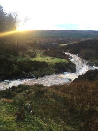 Galloway Forest Park, UK: photo0.jpg