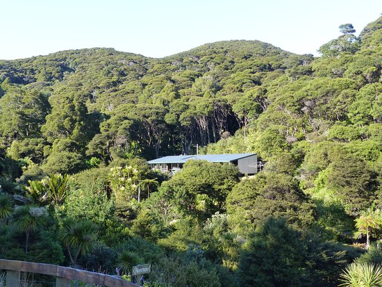 Great Barrier Island, New Zealand: The Backpackers Lodge