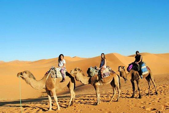 Sahara Bereber