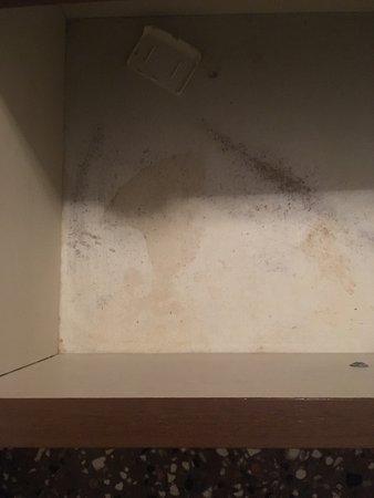Hotel Iris: Très sale, poils, cheveux, araignée et moustique écrasé dans la literie!  Pas de chauffage, pas