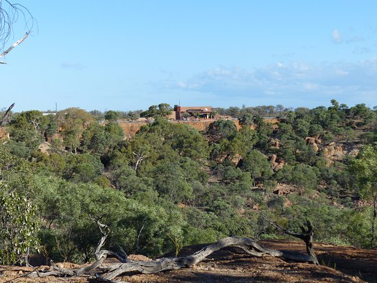 On A Dinosaur Hunt In Outback Queensland