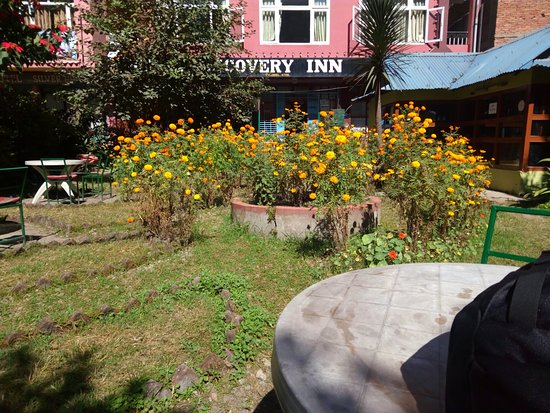 Hotel Discovery Inn: zcamera-20161103_145533_large.jpg