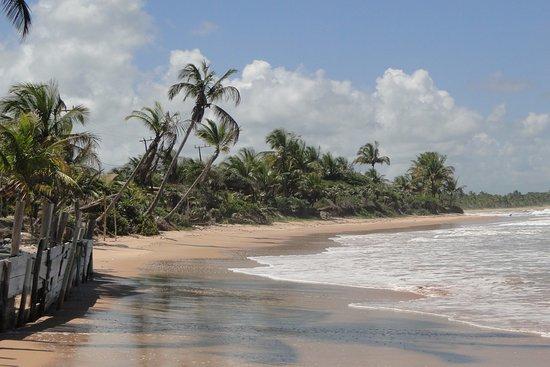 Restaurante do espanhol: Vista da parte esquerda da praia de Algodões em frente ao restaurante
