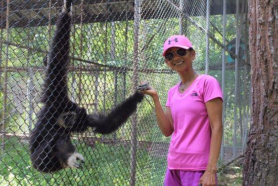 Mae Hong Son Zoo: Making friends