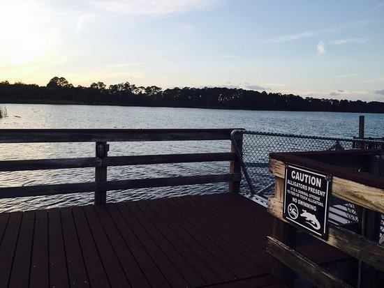 Bahama Bay Resort Orlando by Wyndham Vacation Rentals: photo1.jpg