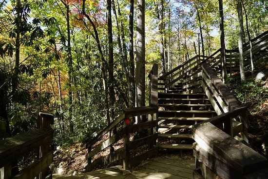 Roaring Gap, NC: Just a few of the many, many stairs