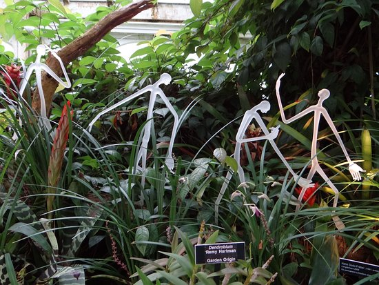 Phipps Conservatory: Dale Chihuly glass sculpture
