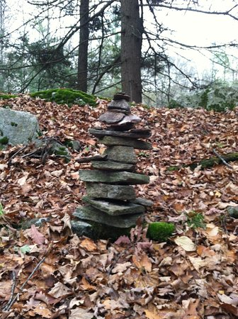 Tantiusques: Cairn that we added a stone to….