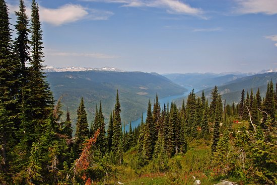 Mount Revelstoke National Park: view of the Columbia River from the top of Mount Revelstoke