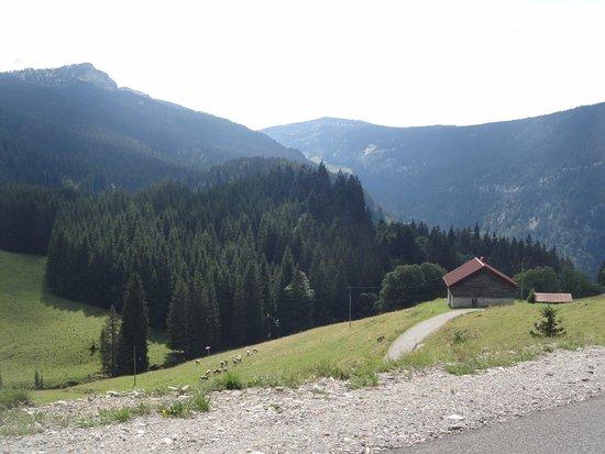 Haute-Savoie, Prancis: ferme