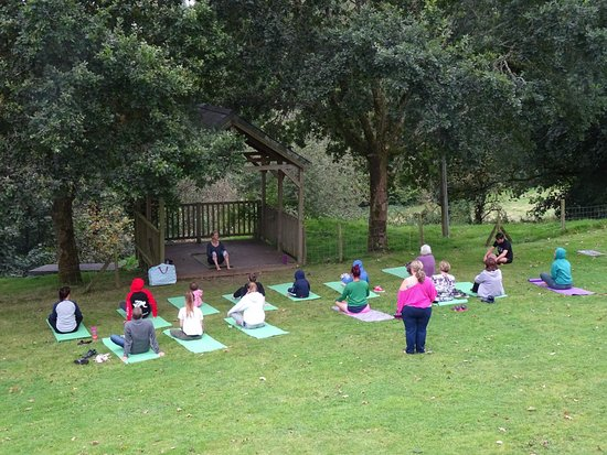 The Green Cornwall: Yoga on the lawn