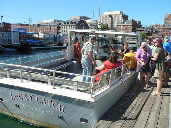 DiMillo's Old Port Marina: Lucky catch on DiMillo's Long Wharf