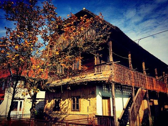 Sisak, Croatia: la bellezza delle wooden houses
