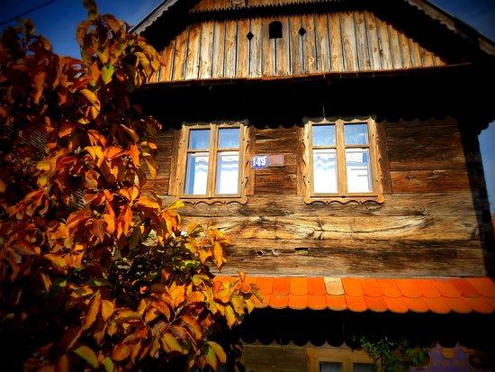Sisak, Croatia: case di legno in autunno