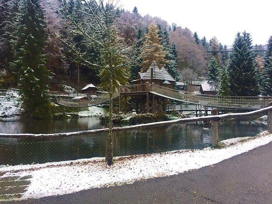 Oberried, Tyskland: Steinwasen Park