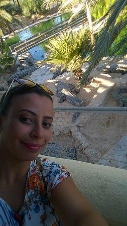 มิเดาน์, ตูนิเซีย: selfie alors les crocodiles